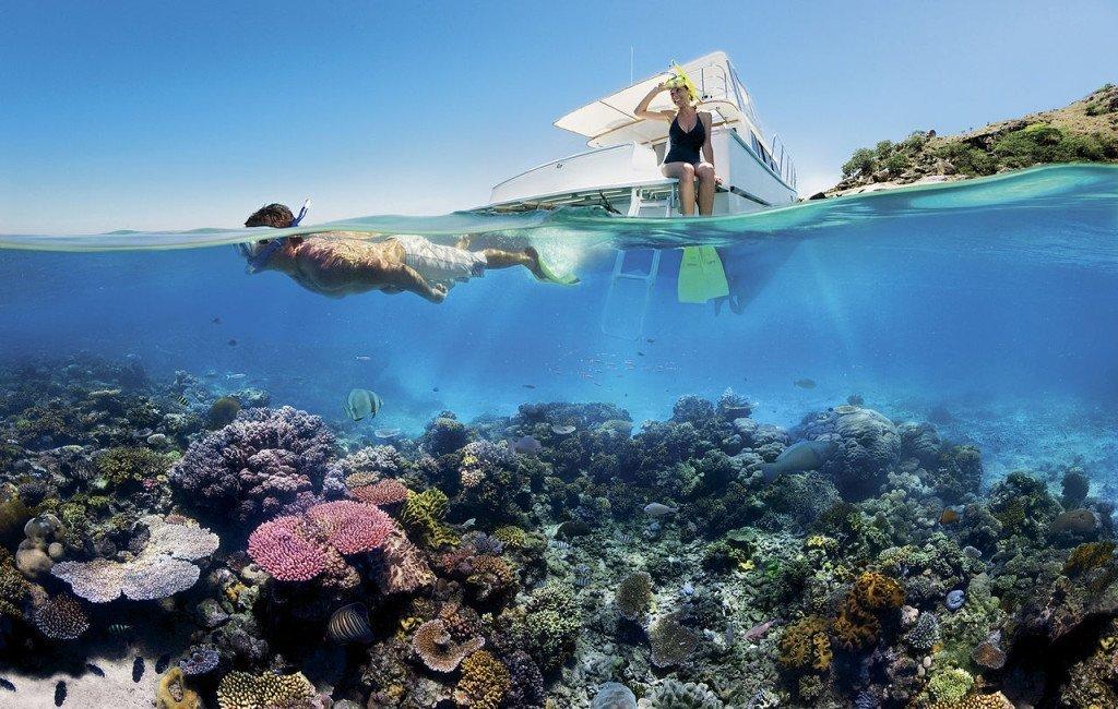 Wielka Rafa Koralowa – magiczny, podwodny świat