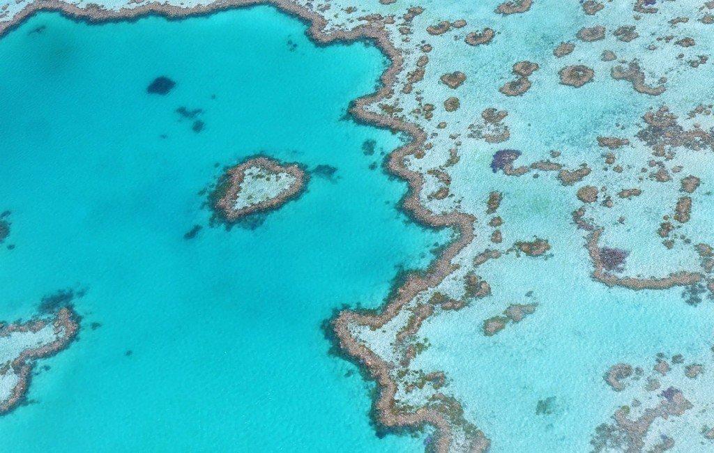 """""""Ścieżki"""" – czyli samotna wyprawa przez pustynię Australii"""